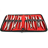 BDEALS 10 Pcs Dental Extracting Forceps kit with Velvet Pouch