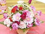 【送料無料】季節のお花のフラワーアレンジメント(ピンク系) (生花)FL-MD-76