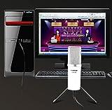 Takstar PCM-1200 Plug 3.5mm Professional Dynamic Microphones for Skype MSN QQ Internet Chat Computer Mic--Black