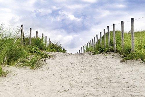 Bild eines Weges zwischen den Dünen auf Rügen