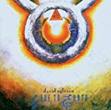 Gone to Earth by DAVID SYLVIAN (2007-04-24)