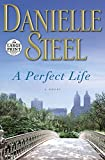 A Perfect Life: A Novel (Random House Large Print)