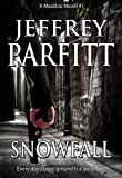 SNOWFALL (Maddox novels Book 1)