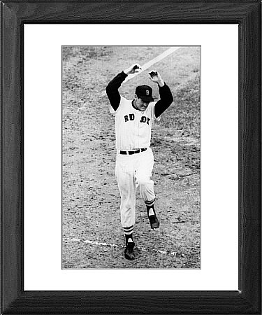 Framed Print of Ted Williams of the Boston Red Sox from Everett Collection
