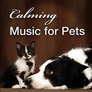 Calming Music for Pets: Gentle Songs to Relax and Calm Down Your Pet Cat or Dog from New Vision Music