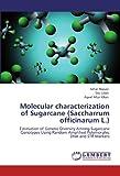 Molecular Characterization of Sugarcane (Saccharrum Officinarum L.)