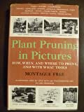 Plant Pruning in Pictures