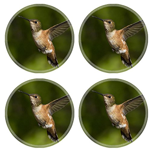 MSD Round Coasters 4 Pack Humming bird flying against natural green background Natural Rubber base IMAGE 24140855