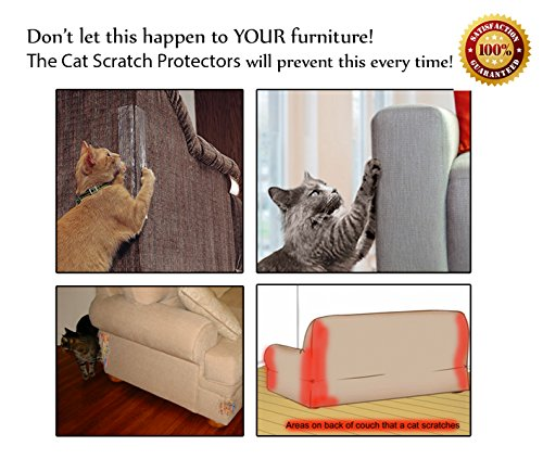 How To Deter Cats From Scratching Leather Furniture