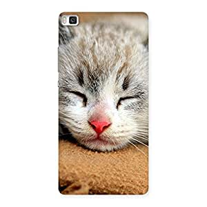 Special Premium Cute Sleepings Cat Multicolor Back Case Cover for Huawei P8