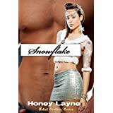 Snowflake (Artist Ecstasy Book 2) ~ Honey Layne