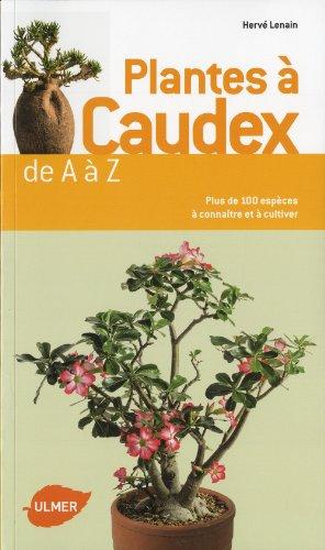 T l charger plantes caudex de a z pdf de herv for Plantes sur internet