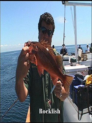 Sport Fishing with Dan Hernandez - Premiere