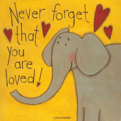 Anne Tavoletti Never Forget Elephant Children's Illustrated Decorative Animal