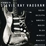 echange, troc Various Artists - Tribute to Stevie Ray Vaughan