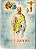 img - for THE BIBLE STORY: A Textbook for Use in the Lower Grades. book / textbook / text book