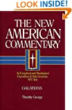 Galatians: An Exegetical and Theological Exposition of Holy Scripture (The New American Commentary)