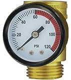 Valterra A01-0110VP Lead-Free Water Pressure Gauge