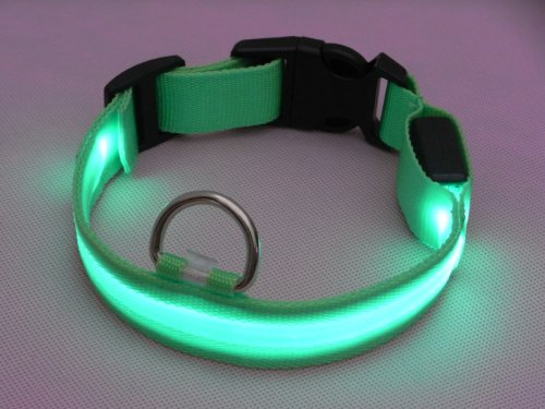 puppy love led collars