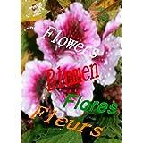 Flowers  Blumen  Fleurs  Flores (German Edition)