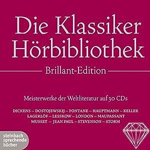Die Klassiker Hörbibliothek Brillant-Edition: Meisterwerke der Weltliteratur auf 30 CDs