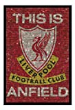 Liverpool FC Mosaic Poster Black Framed