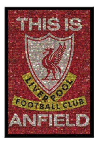 Liverpool FC Mosaic Poster Black Framed