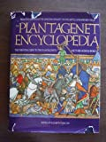 img - for Plantagenet Encyclopedia: From the Origins of the Angevin Dynasty to the Battle of Bosworth Field -- The Essential Guide to the Plantagenets book / textbook / text book