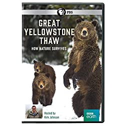 Great Yellowstone Thaw: How Nature Survives DVD