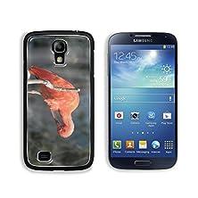 buy Msd Samsung Galaxy S4 Aluminum Plate Bumper Snap Case Rare Pink Parrot Bird With Very Long Beak Image 25172619