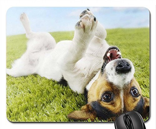 cheer-up-mouse-pad-mousepad-dogs-mouse-pad
