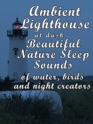 Ambient lighthouse at dusk beautiful nature sleep sounds of water birds and night creators