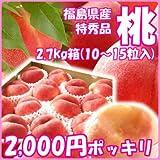 献上桃の郷『桑折町の特秀品桃』2.7kg箱(10?15玉入)