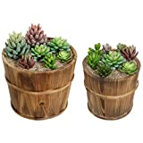 Set of 2 Country Rustic Brown Wood Succulent Pots Planters / Flower Buckets - MyGift®