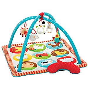 Skip Hop Funky Farmyard Activity Mat