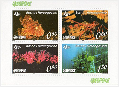 greenpeace-stamps-for-collectors-fauna-of-the-oceans-souvenir-sheet-4-stamps-issued-in-2000-michel-n