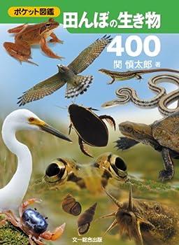 田んぼの生き物400 (ポケット図鑑)