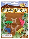 Grow Your Own Dinosaurs Party Accessory