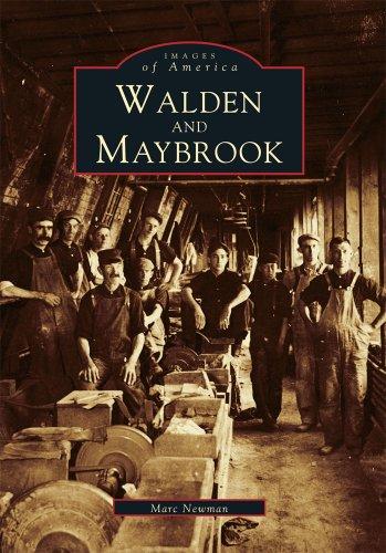 Walden and Maybrook   (NY)  (Images of America)