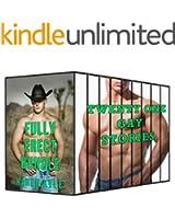 Fully Erect Bundle (21 Book Box Set) (Gay Romance) (English Edition)
