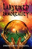 Labyrinth of Immortality (Secret Earth Series Book 1)