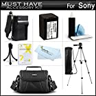 Must Have Accessory Kit For Sony HDR-XR260V, HDR-TD20V, HDR-CX190, HDR-CX210,HDRCX330/B, HDRPJ810/B, FDR-AX100/B, HDRCX240/B, HDR-PJ670, FDR-AX33 HD Camcorder Includes Replacement NP-FV70 Battery +++
