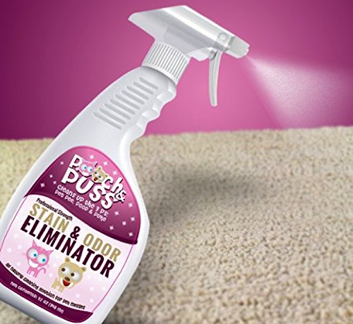 Pooch & Puss Pet Odor Eliminator