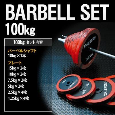 バーベル ラバータイプ (100kgセット) 【トレーニング解説DVD付き】