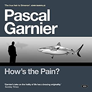 How's the Pain? Audiobook