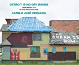 img - for Detroit Is No Dry Bones: The Eternal City of the Industrial Age book / textbook / text book