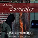 A Secret Encounter: Amish Secrets, Book 2 Audiobook by J. E. B. Spredemann Narrated by Lisa Larsen