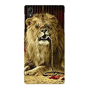Gorgeous Dude Lion Multicolor Back Case Cover for Sony Xperia Z1