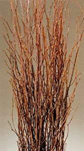 ... Brown Cylinder Floor Vase and Free Birch Branches - Decorative Vases