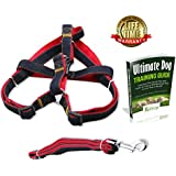 [Special Promotion] Olivery Dog Leash and No-Pull Adjustable Harness - Double Padded, Solid, Easy Step-in with Comfort Control - Fit Small to Medium Dogs - Ideal for Dog Training and Everyday Walking - Free Dog Training E-Book